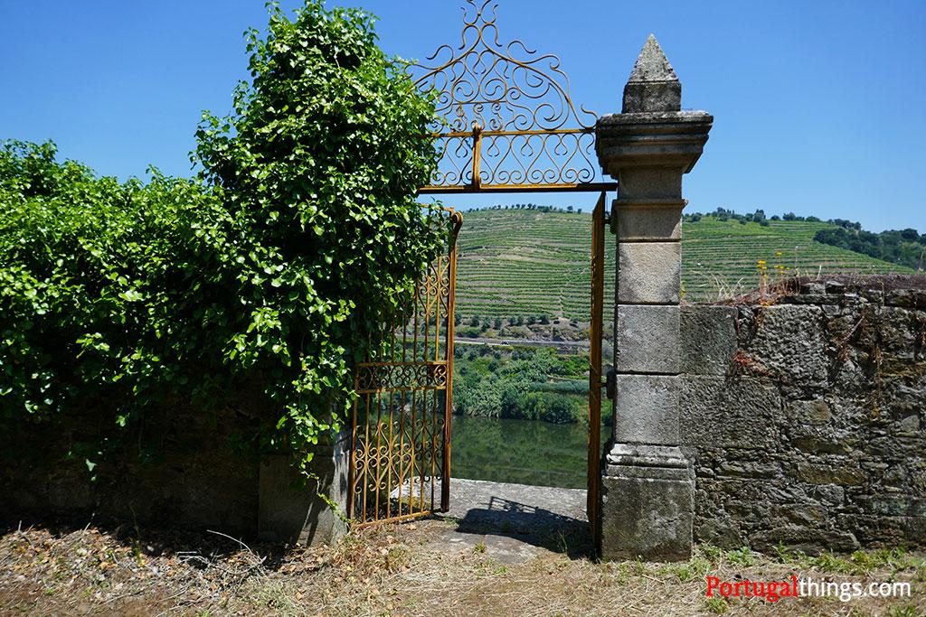 Port wine trail