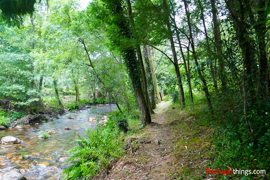 Trail of Casal de São Simão