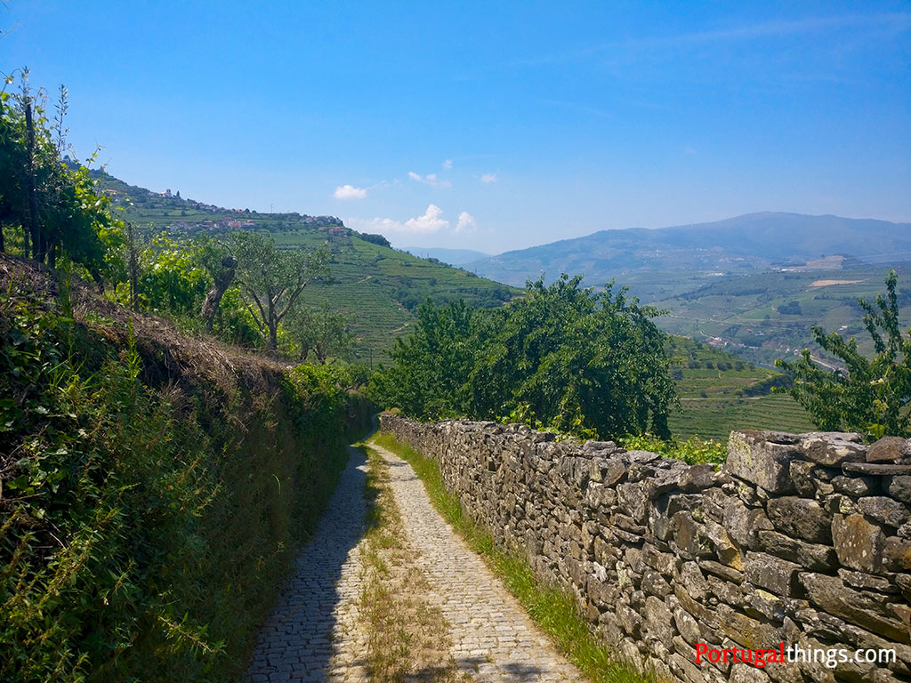 Hiking the PR2 Lamego