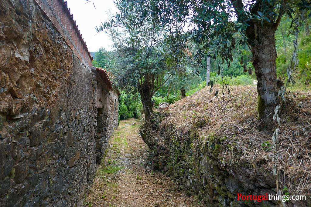Hiking the trail of Casal de São Simão
