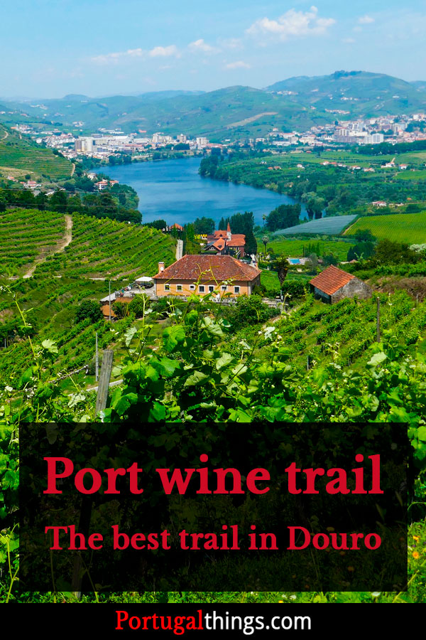 Port wine trail - PR2 Lamego - The best trail in Alto Douro Wine region