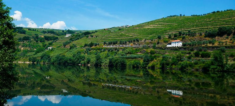 Best hike in Douro Valley