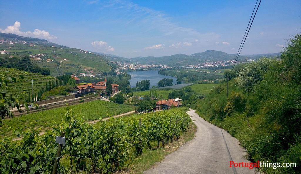 The best trail in Alto Douro Wine region