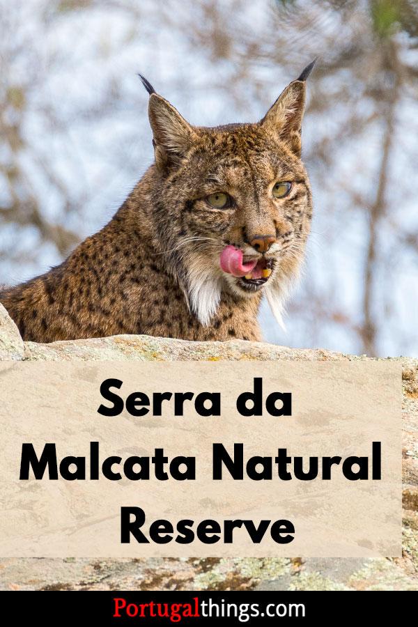 How to visit Serra da Malcata Nature Reserve