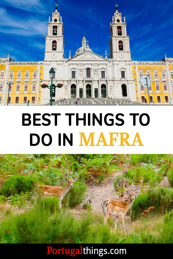 10 Things to do in Mafra, the World Heritage sites and much more