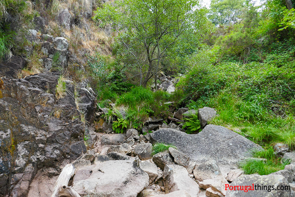 Leonte waterfall in preguiça trail
