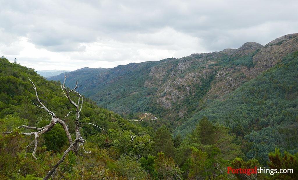 lookout in preguiça trail
