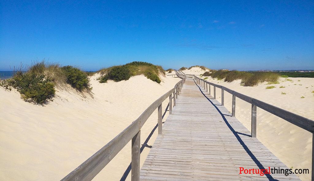 wooden walkways in the beginning of PR5 Mira