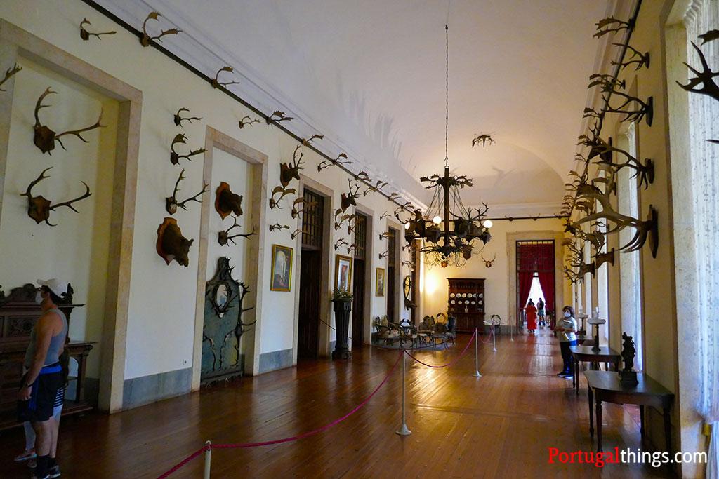 São da caça, uma das muitas salas a não perder no palácio