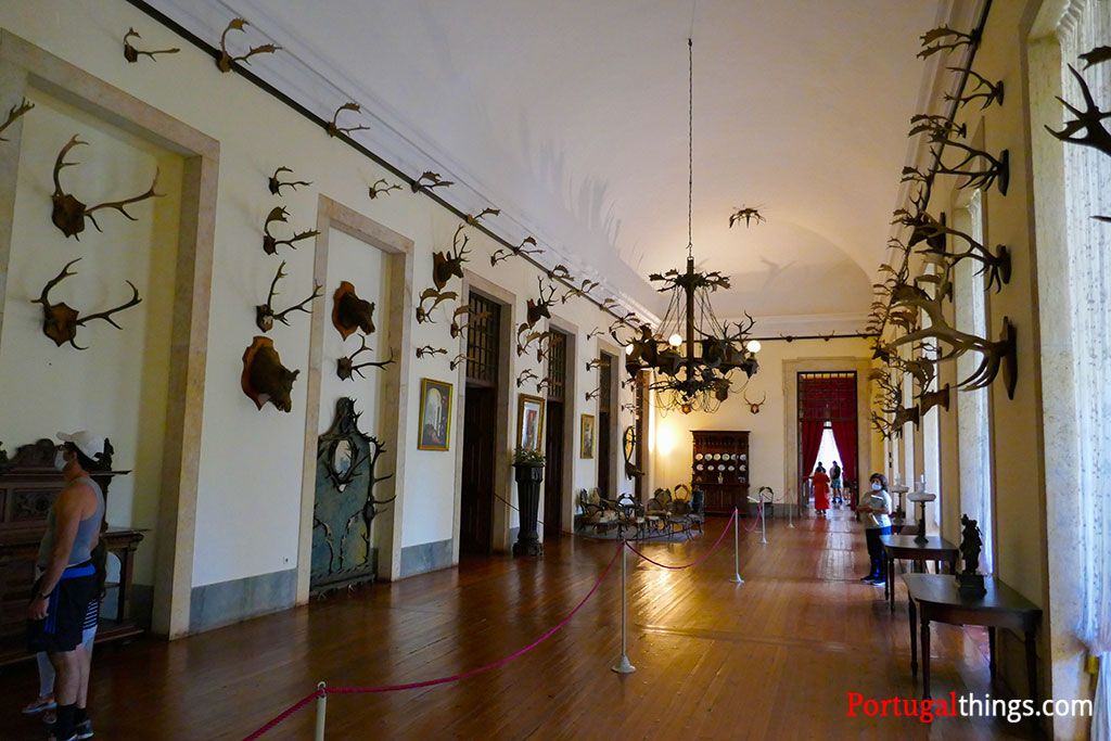 Things to do in Mafra