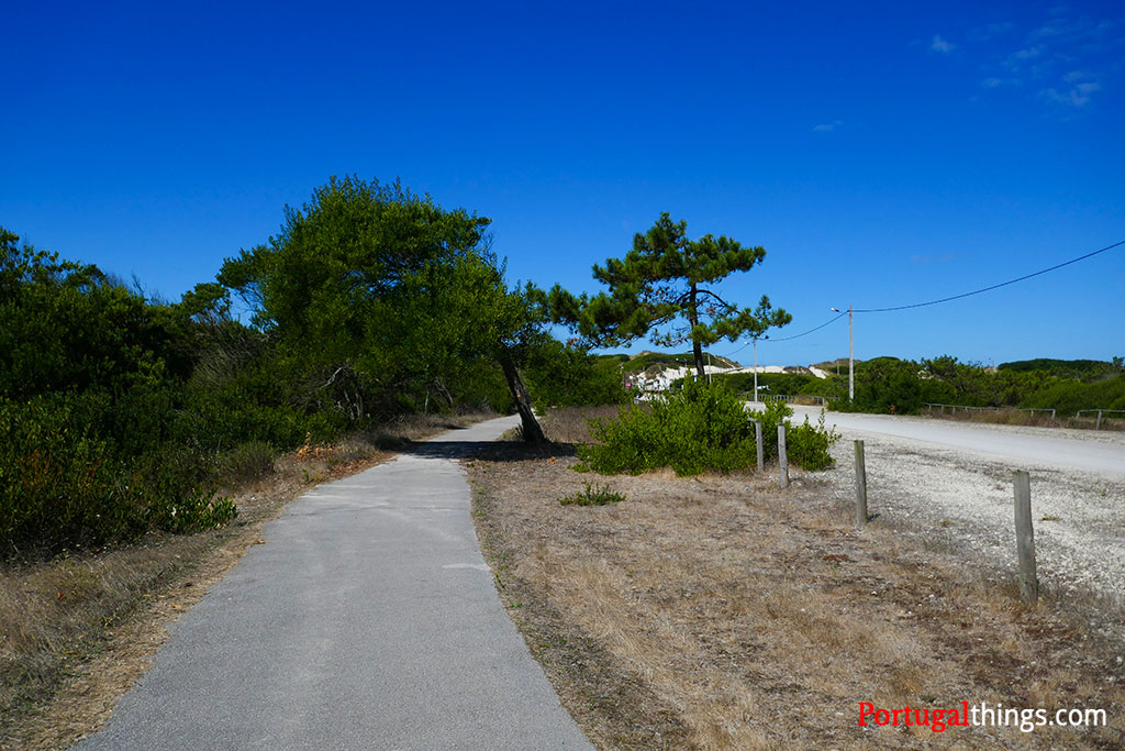 Rota das Dunas PR5 shares the path with Ecovia of Mira
