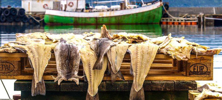 História do bacalhau em Portugal