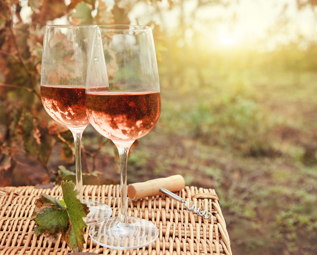 tudo o que precisa saber sobre vinhos de Portugal