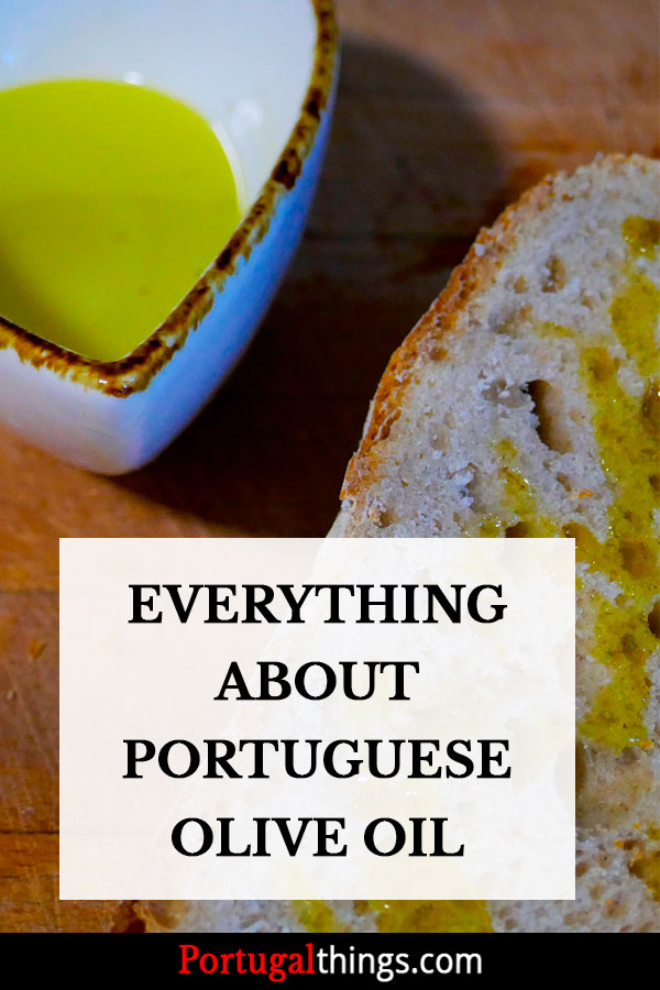 Everything about Portuguese olive oil